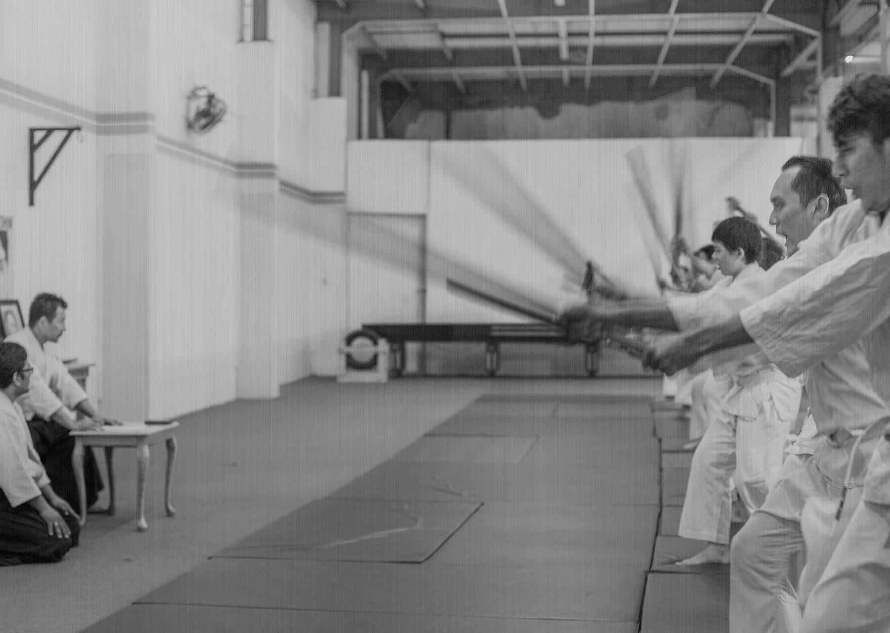 Iwama Shinshin Aikido Busenkai – Dento Iwama Ryu Aikido